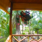 hotel in bocas del toro tierra verde 9 150x150 Photo Gallery