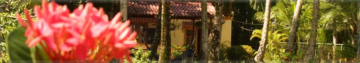 <span>Hotel Tierra Verde:</span> Hotel in Bocas del Toro