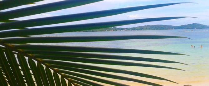 Bocas del Toro Hotel Tierra Verde Summer Special